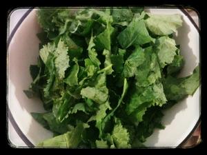 Still picking kale in my neighbor's garden.